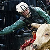"BANGOR, Maine -- 03/11/2017 -- Lamar Lehman tries to stay on Hacksaw Ridge during the Professional Bull Riders Velocity Tour ""Bangor Buck Off,"" at Cross Insurance Center in Bangor Saturday. Ashley L. Conti 