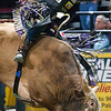 """BANGOR, Maine -- 03/11/2017 -- Tyler Harr tries to stay on One Eyed Ghost during the Professional Bull Riders Velocity Tour """"Bangor Buck Off,"""" at Cross Insurance Center in Bangor Saturday. Ashley L. Conti 