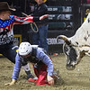 """BANGOR, Maine -- 03/11/2017 -- A bullfighter (left) distracts Smokin Do Dad so Quentin Vaught can move to safety during the Professional Bull Riders Velocity Tour """"Bangor Buck Off,"""" at Cross Insurance Center in Bangor Saturday. Ashley L. Conti 