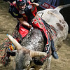 """BANGOR, Maine -- 03/11/2017 -- Alex Cardozo rides Jacked Up during the Professional Bull Riders Velocity Tour """"Bangor Buck Off,"""" at Cross Insurance Center in Bangor Saturday. Ashley L. Conti 