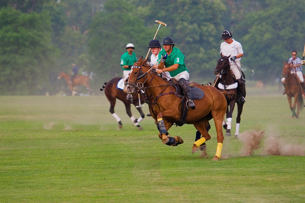since I had never done any polo shots,