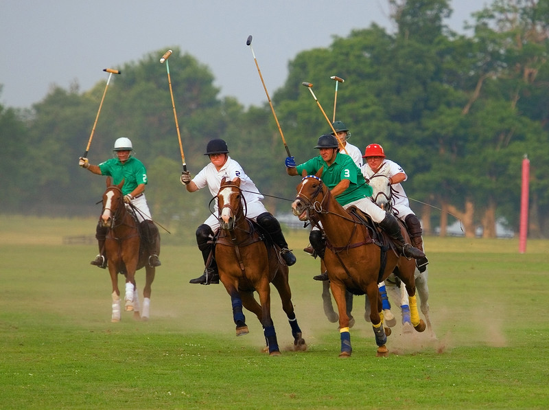There was a polo match going on and,