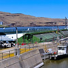 Barge and tug entering the upriver portion of the navigation lock where it will then be lowered 100 feet to the river level below.  June 12, 2010  Lower  Monumental Dam on the Snake River