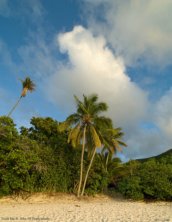 St John, US Virgin Islands, 2009
