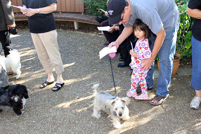 IMG_1638jcarrington blessing of pets st p  10211