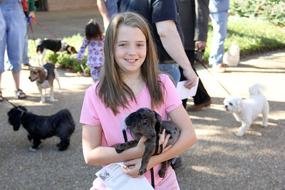 IMG_1633jcarrington blessing of pets st p  10211
