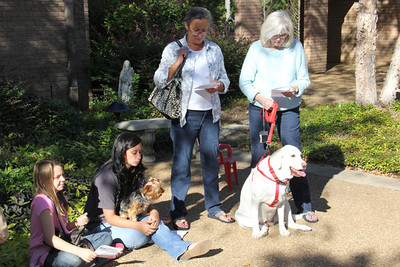 IMG_1648jcarrington blessing of pets st p  10211