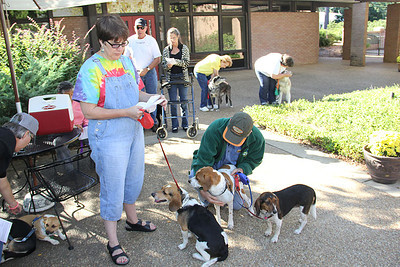 IMG_1639jcarrington blessing of pets st p  10211