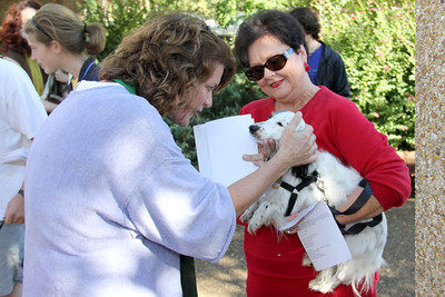 IMG_1651jcarrington blessing of pets st p  10211