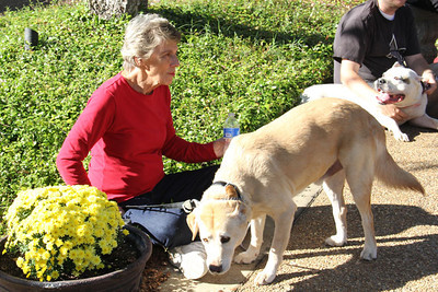 IMG_1650jcarrington blessing of pets st p  10211
