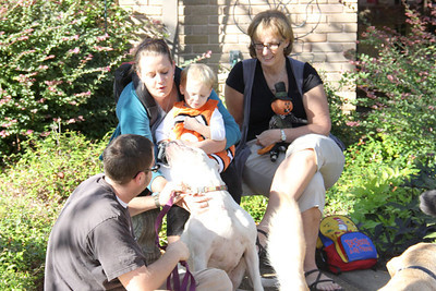 IMG_1647jcarrington blessing of pets st p  10211