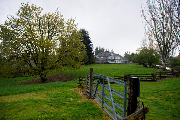 Stable and Pasture
