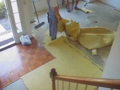 Carpet gone, padding coming up.