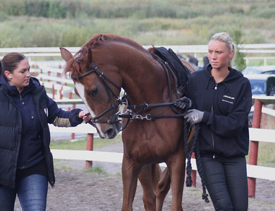 IMG_4456 Alexandra P. Bjerg & Jaqueline Jacobsen with Red Pearl