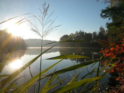 zwischen See-Camping Weichselbrunn (rechte Hälfte) und der Brücke; Sonnenaufgang; 200m Fußweg entfernt.
