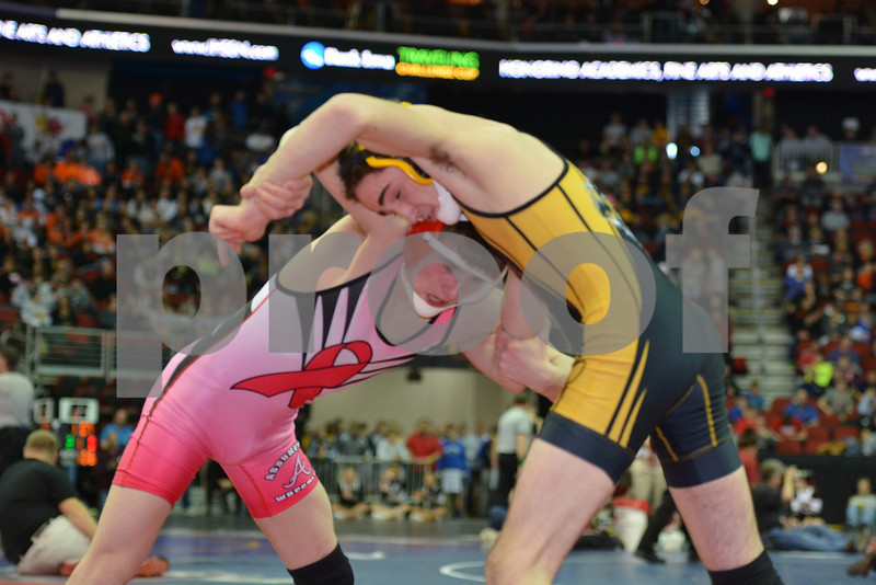 2014 Iowa High School Athletic Association State Tournament Class 2A<br /> 113<br /> Semifinal - Ryan Leisure (Clear Lake) 37-4 won by decision over Jacob Fenske (Assumption, Davenport) 34-9 (Dec 2-1)
