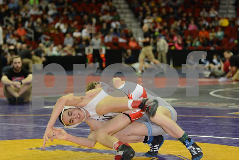 2014 Iowa High School Athletic Association State Tournament Class 3A <br /> 106<br /> Cons. Round 2 - Brenden Baker (Cedar Rapids, Jefferson) 41-1 won by major decision over Travis Pulse (Davenport, West) 29-13 (MD 13-4)