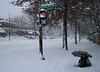 crazy snowstorm #2