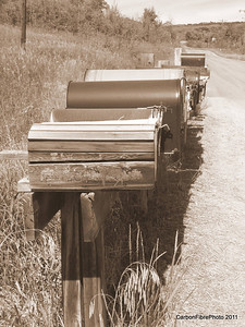 Mail boxes waiting anxiously