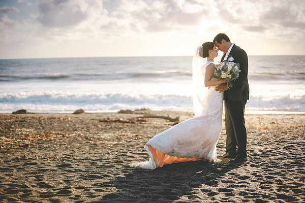 Stephanie & Chris - Wedding Collection