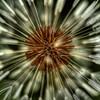 IMG_1996_7_8_tonemapped