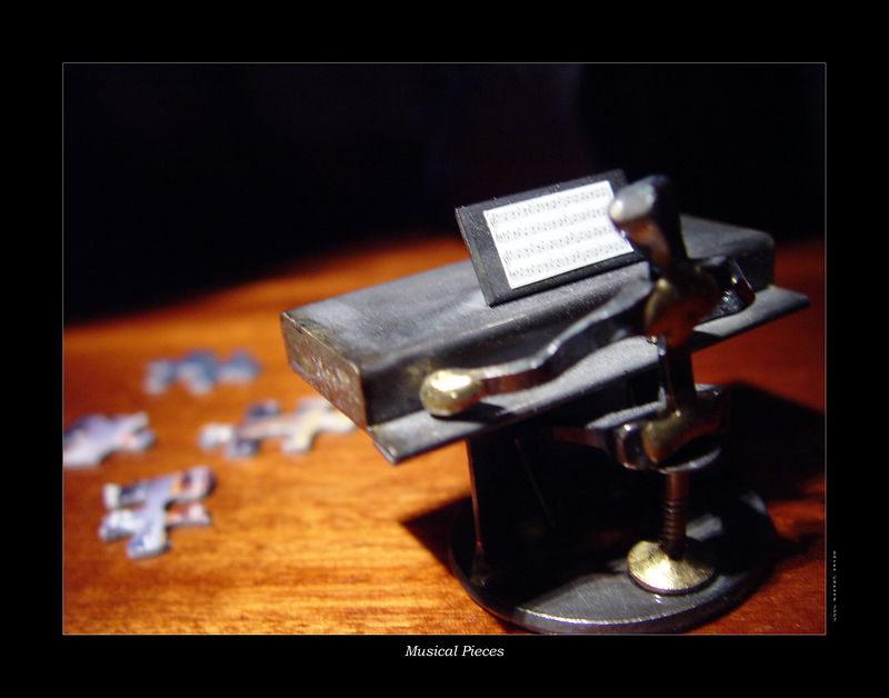 Musical Pieces - Another friend of mine loved playing music on the piano and puzzles.  What better way to combine the two themes into one?<br /> <br /> On another note:  This photo was taken on top of a real piano.