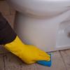 GJ4_Bathroom Floor Scrub