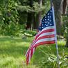 Flag w Green