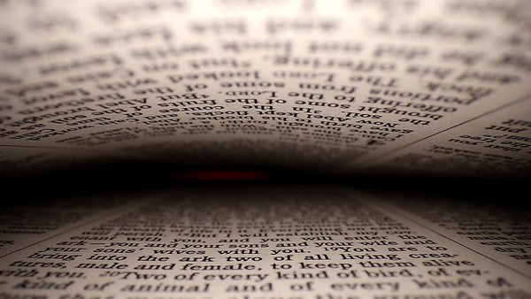 envelop the word 16b
