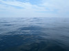 The little speck on the horizon line is Leslie's paddle blade.