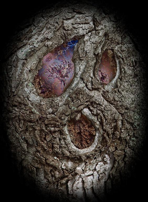 Spookified Tree (Happy Halloween!)