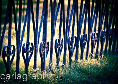 fence-7597