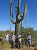 SCA Team and Desert Botanical Garden Staff get ready for saguaro harvest, summer 2005.
