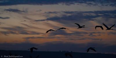 Sunrise in Hahula