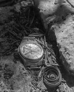 The Watch Tree series