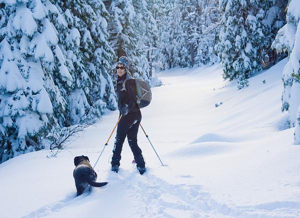 Hwy 20 skiing