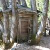 Yuba River cabin