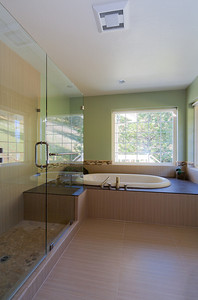 Shuetz Master Bath Frameless shower enclosure on left.