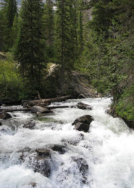 Hidden Falls Trail