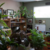 Meredith and Mark's office---jungle!
