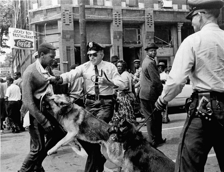 civil rights dogs
