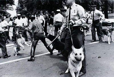 civil rights dogs1