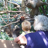 Grannie and Graham at the MN Zoo