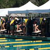 Swimmers take your marks. Hailey at Marin Swim League Champs meet, 50 m freestyle. July 2014