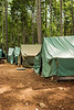 A group of five tents in a clearing. This campsite is part of a Boy Scout summer camp.
