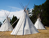 Three teepees together in a camp. This is a traditional form of shelter for native Americans, particularly for the Great Plains and American West.