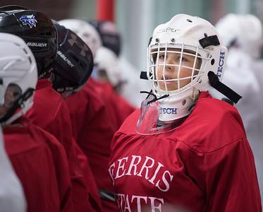 boys_hockey-2010