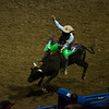 Bull Riding, Cody, Wyoming