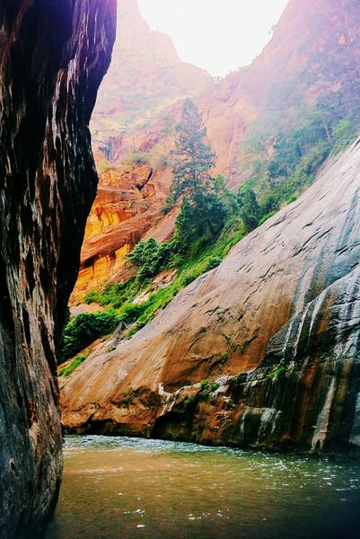 The Narrows, Zion, Utah