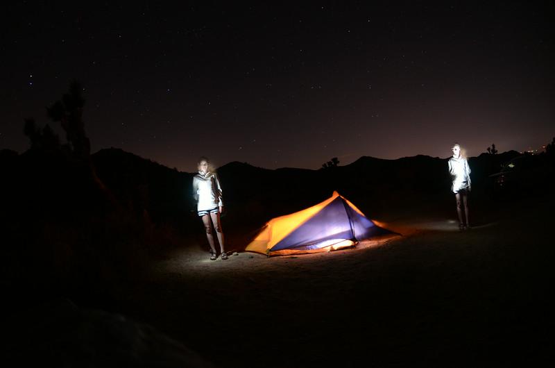 Twins? Black Rock Canyon Campsite Joshua Tree National Park